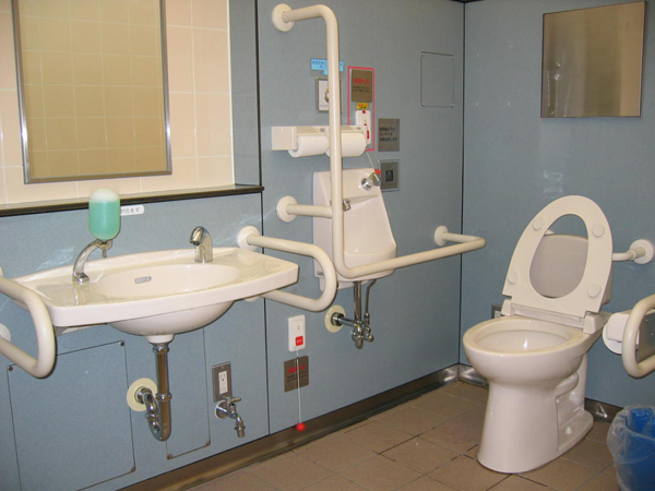 Merveilleux ... Including Spacious And Well Equipped U201cmultipurpose Toiletsu201d That Are  Wheelchair Accessible. They Used To Be For U201c Disabled People U201d, But Now  They ...